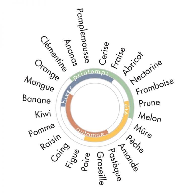 roue-des-saisons-fruits